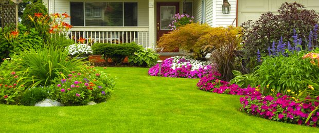 7 Easy Ideas to Create a Beautifully Landscaped Yard | The ...