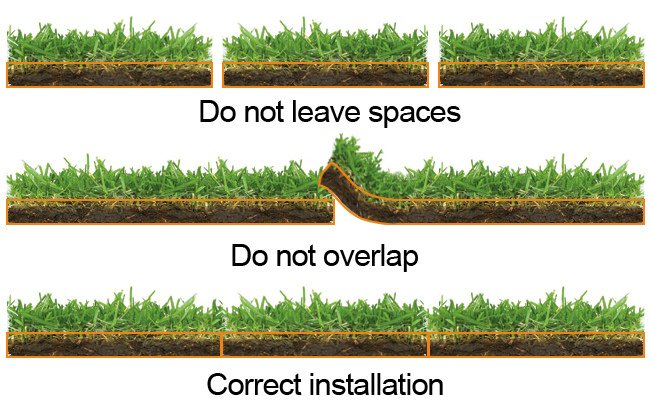 Making a New Lawn From Seed or Sod