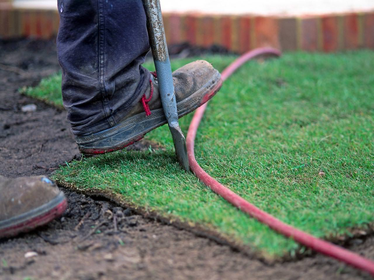 Diy Sod How To Plant A New Lawn From Seed Or Sod The Garden Glove