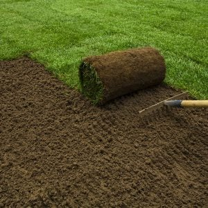 How to Plant a New Lawn From Seed or Sod