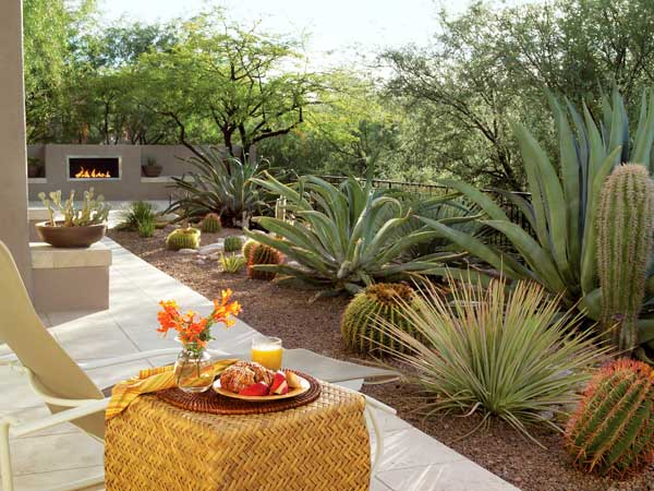 Desert Backyard Designs : Backyard Desert Landscaping Ideas In Backyard Landscaping Pictures to