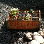 Quick and Easy Garden Container Project
