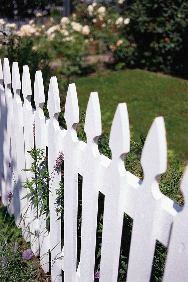 Build a Garden Fence Low Cost Ideas The Garden Glove