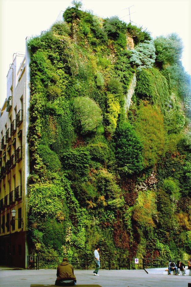 Gardening inspiration what simple and extreme gardens can for Jardin vertical madrid