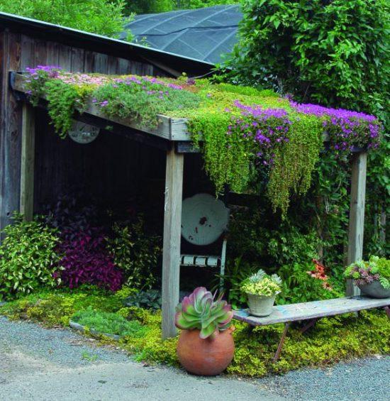 pleasure of gardening