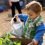 Making the Garden Safe for Kids