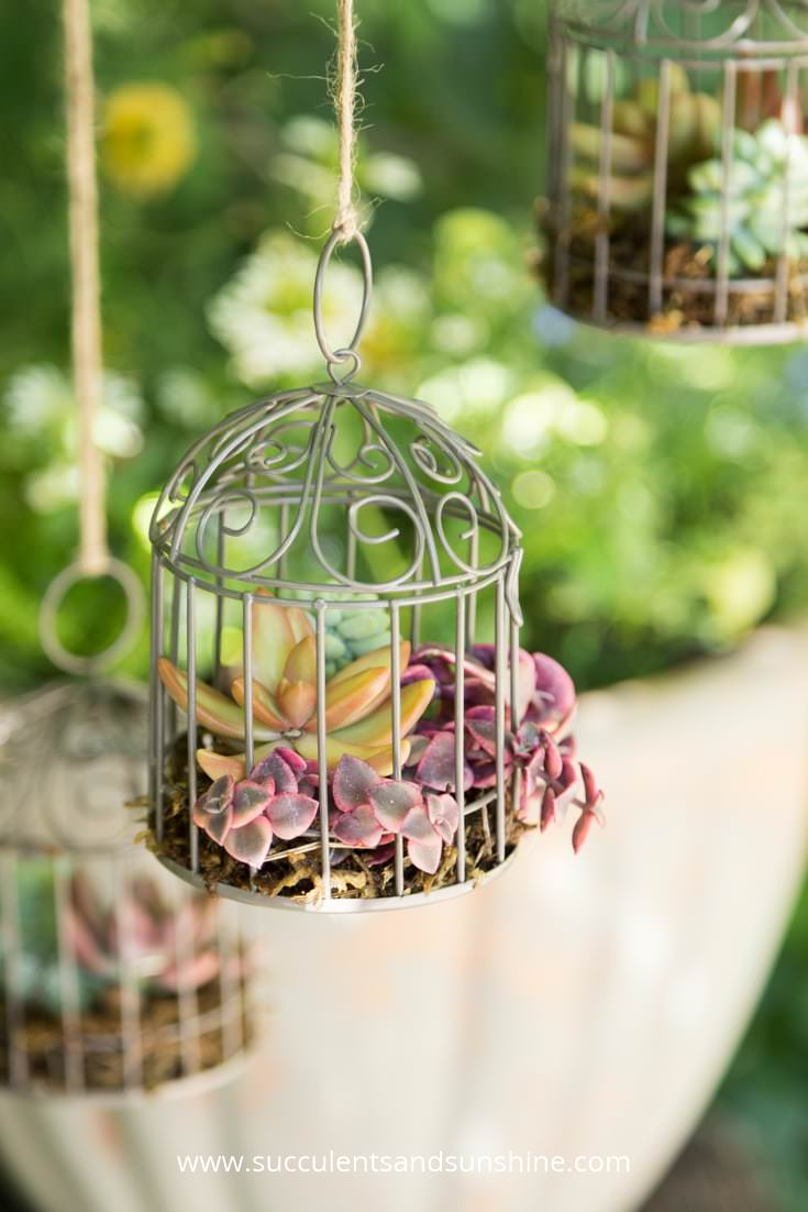 Clever Garden Container Ideas You Never Thought Of The Garden Glove