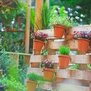 DIY Wooden Pallet Garden Ideas