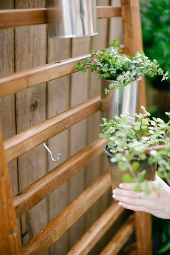 Go Vertical! Fresh DIY Garden Projects