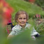 Healing Gardens: What Can Garden Therapy Do For You?