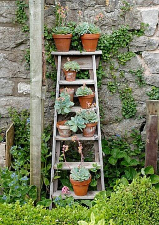 vertical-garden-ladder