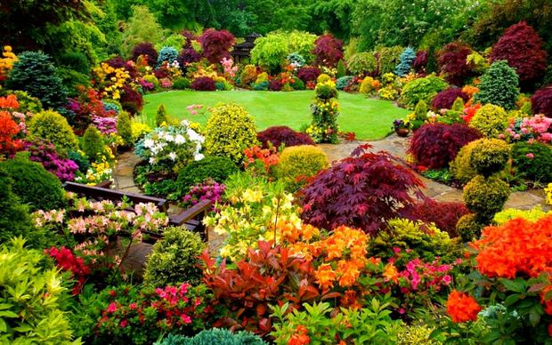 Beautiful backyards inspiration for garden lovers the for Beautiful garden pictures of the world
