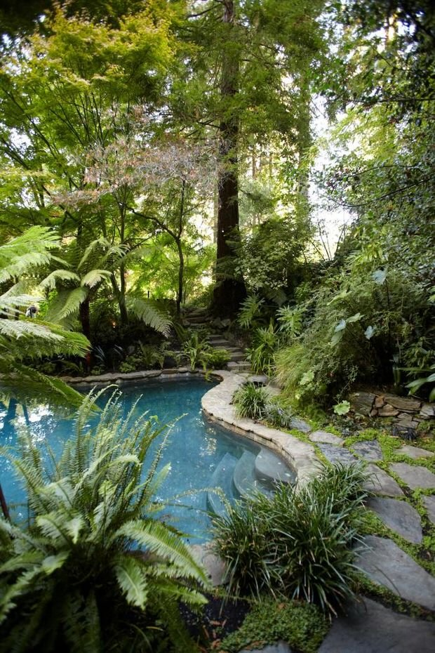 Beautiful backyards inspiration for garden lovers the for Jungle garden design ideas