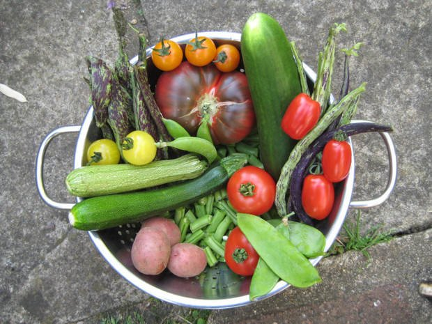 harvesting vegetables for flavor
