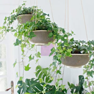 Hang It! - DIY Hanging Planters