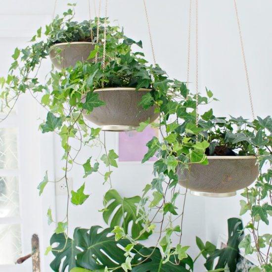 Hang It! - DIY Hanging Planters