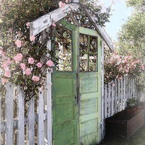 Old door garden gate