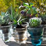 DIY – Cool and Creative Planter
