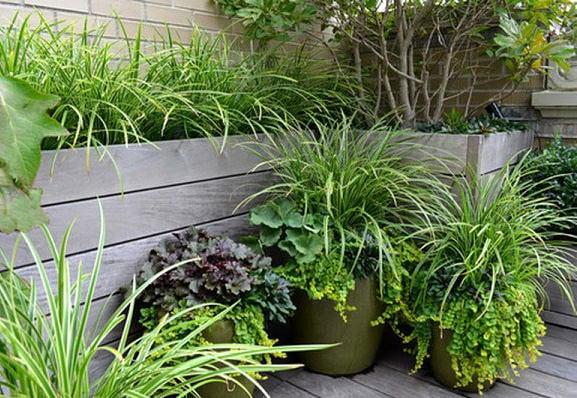 Small Garden Design Tips And Tricks The Garden Glove