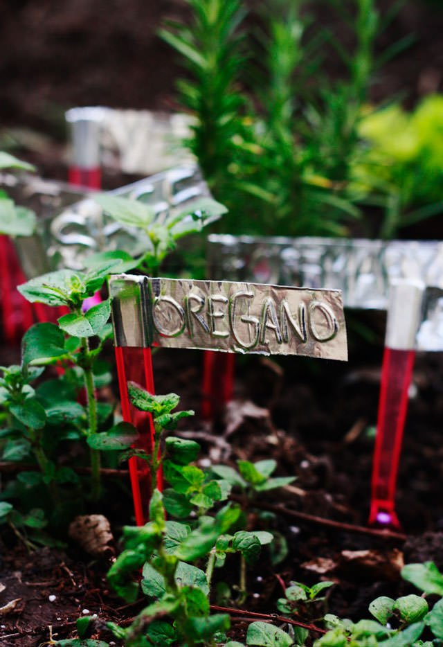 DIY Plant Markers | The Garden Glove