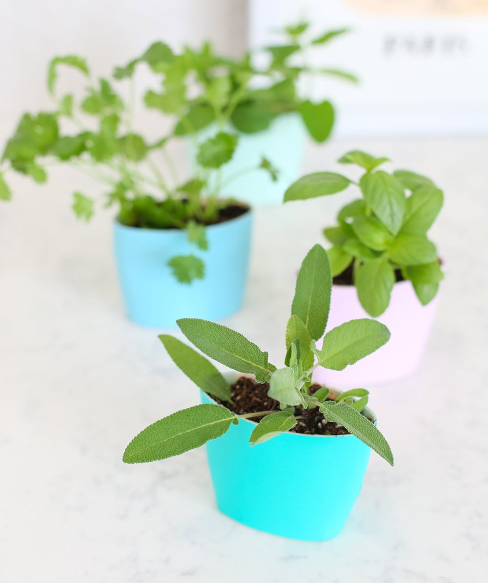 14 Brilliant DIY Indoor Herb Garden Ideas | The Garden G on