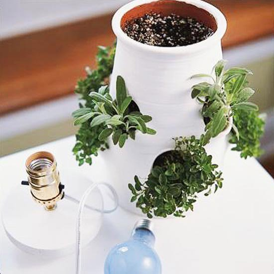 14 Brilliant DIY Indoor Herb Garden Ideas | The Garden Glove
