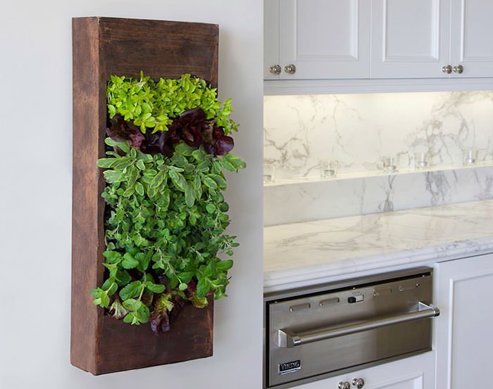 This Indoor Herb Garden Idea Is Simply A Wooden Box Planted Tightly With  Herbs, Then Hung On The Wall. Be Sure To Use A Waterproof Plant Liner  Inside The ...