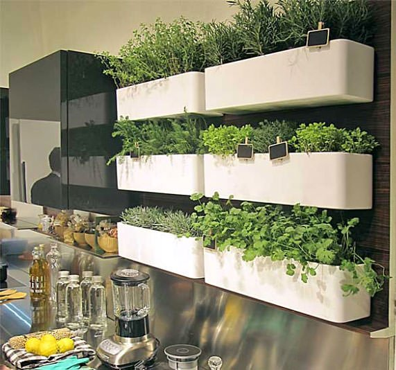 Another Example Of Using A Wall Storage System As An Indoor Herb Garden  Planter, From U0027Favethingu0027.