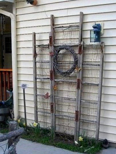 Diy garden trellis projects the garden glove for Old wooden ladder projects