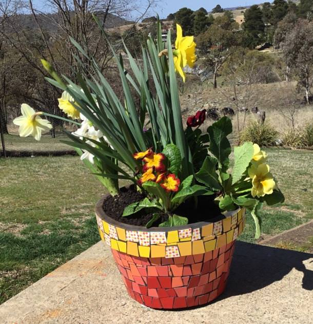... This DIY Mosaic Garden Pot Update. This Is A Creative Way To End The  Problem Of Having Boring Planters Or Pots! They Have A Tutorial On How To  Grout ...