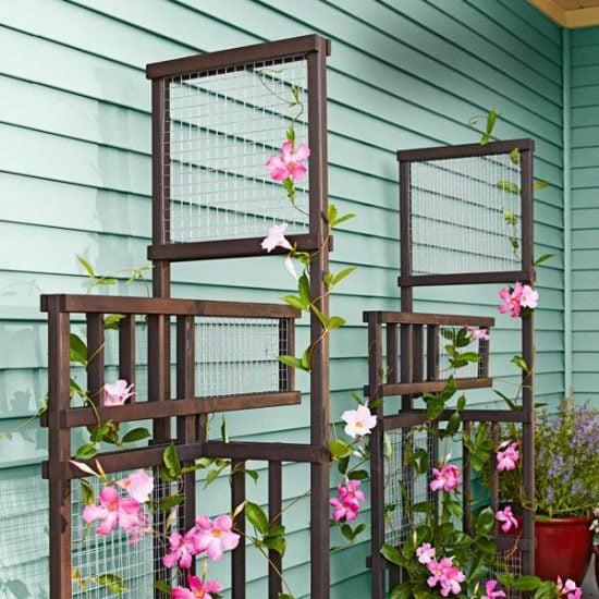 DIY garden trellis projects