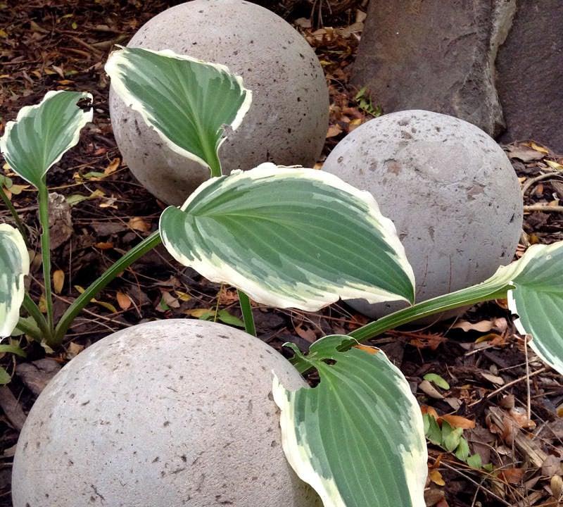 DIY Concrete Garden Globes