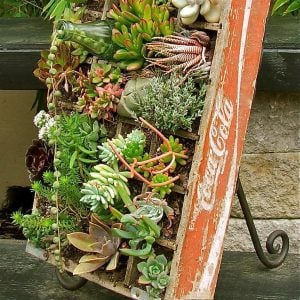More Unique Garden Containers You Never Thought Of