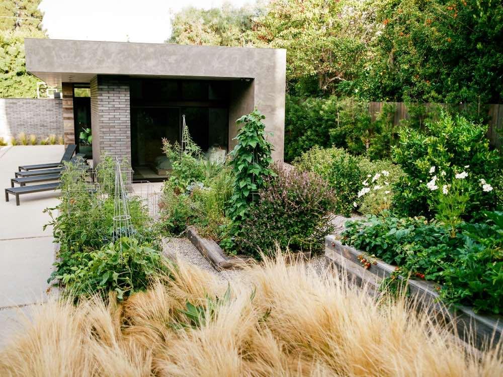 Pretty Ornamental Edible Garden Design