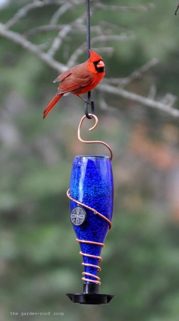 16 Unique Amp Creative Diy Bird Feeders The Garden Glove