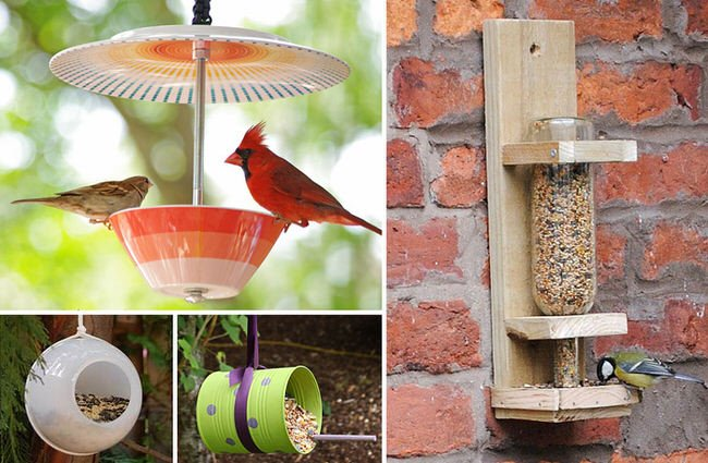 Bird Feeder Garden Designs