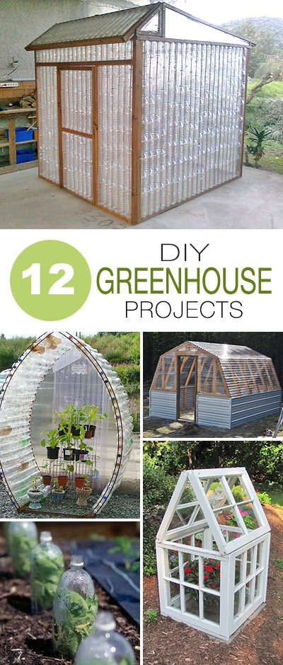 Great DIY Greenhouse Projects The Garden Glove - Backyard greenhouse ideas