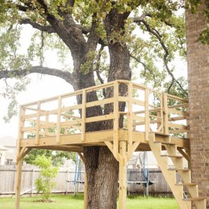 Want to Build a DIY Treehouse?