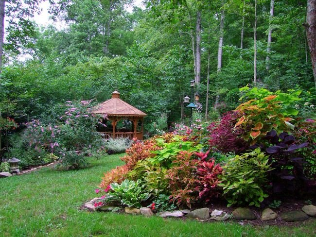 Island Beds Are A Great Solution For A Garden That Lacks A Focal Point, And  An Easy Way To Add Color And Texture To A Large Expanse Of Boring Lawn.