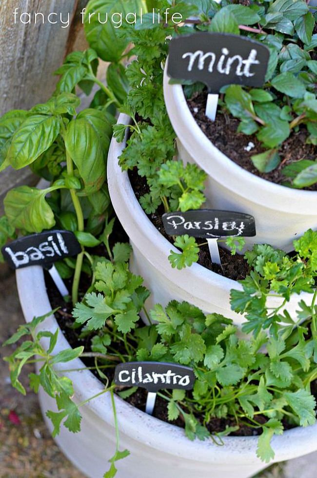 Creative Outdoor Herb Gardens The Garden Glove