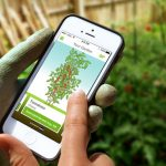 Top 5 Gardening Apps You Need Today!