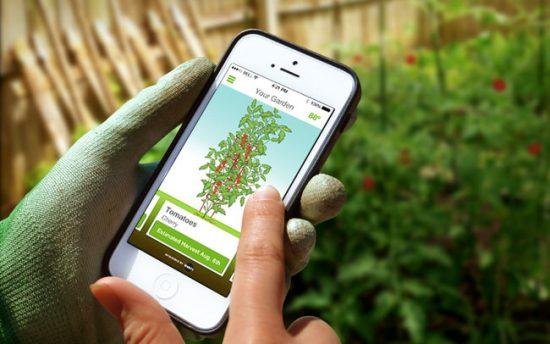 Top 5 Gardening Apps