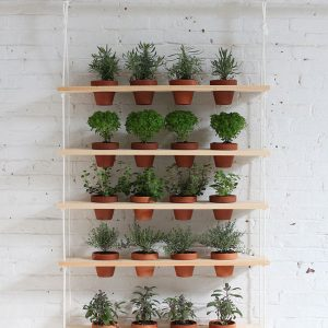 Creative Outdoor Herb Gardens