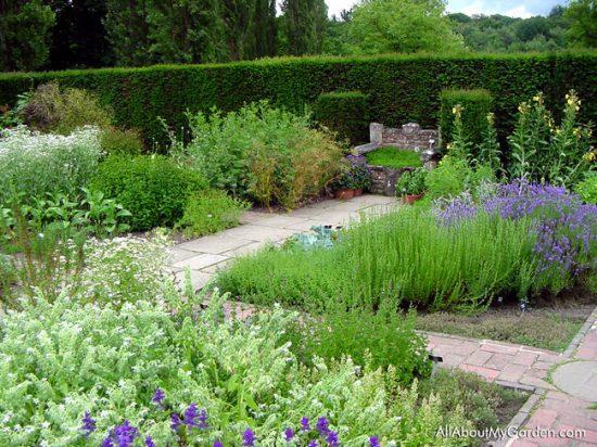 Outdoor Herb Gardens- Pathway