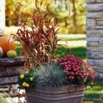 Fabulous Fall Containers