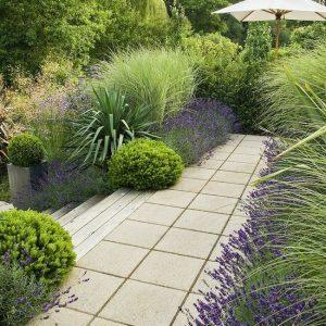 Make Your Garden Lush