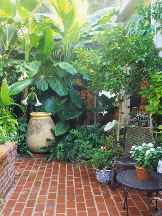 How to Make Your Garden Lush! | The Garden Glove