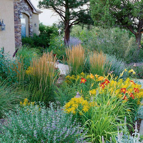 Make your garden lush the garden glove for Garden design xeriscape