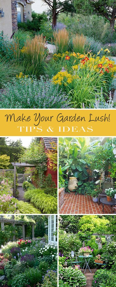 How To Make Your Garden Lush The Garden Glove