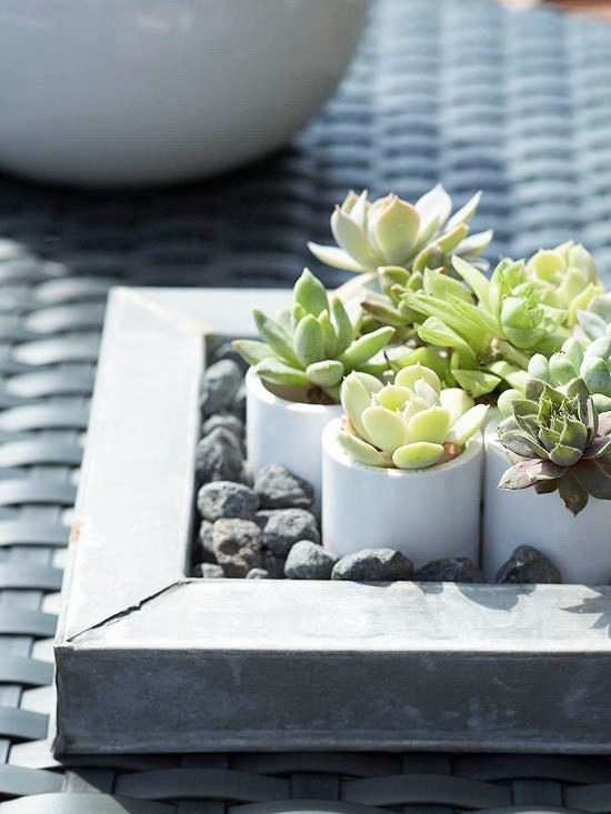 Small White DIY Succulent Planters